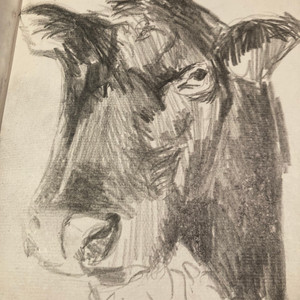 Sketch for Blackie painting