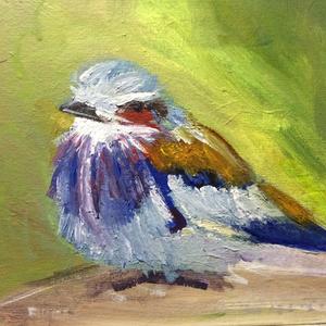 Bird of provision
