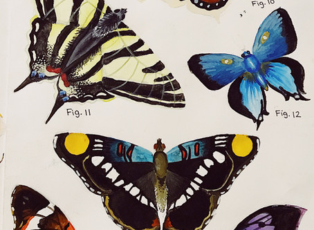 The Butterfly Effect: A Look inside Faye Ritchie's Mystical Art