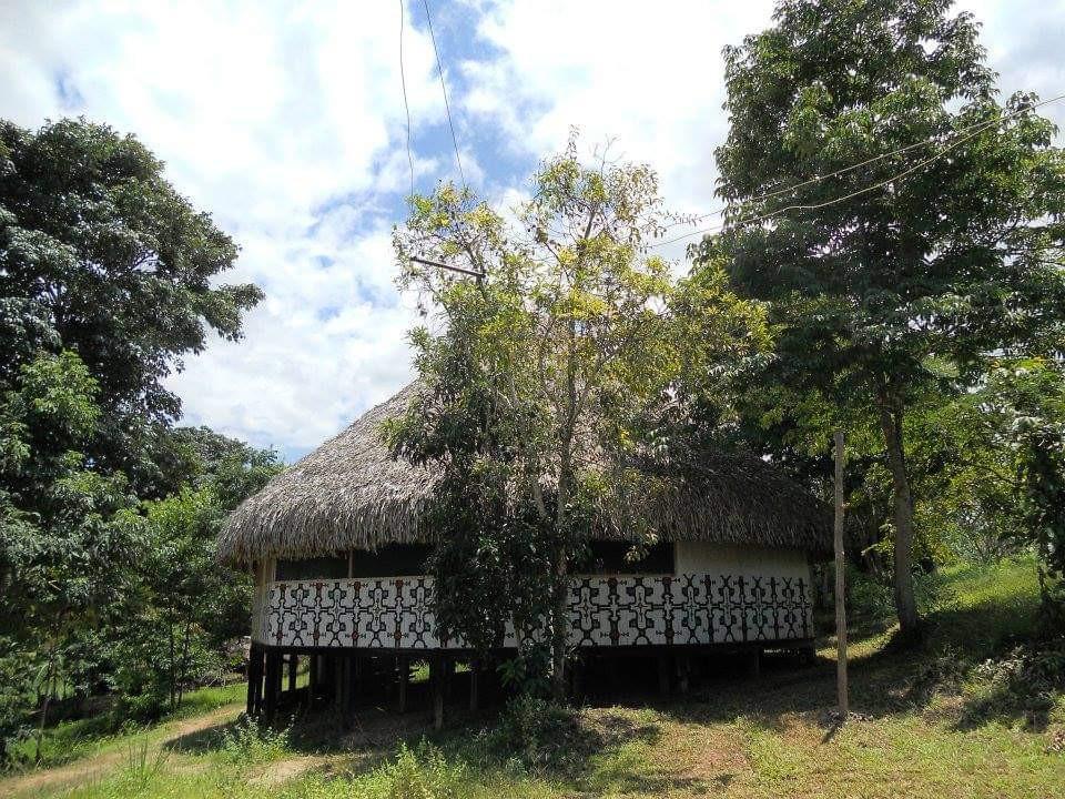 Maloca Jungle Trip Ameyali