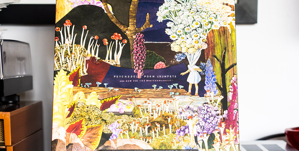 Psychedelic Porn Crumpets ‎– And Now For The Whatchamacallit (LP)