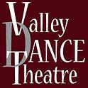 VDT Logo Background.jpg