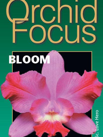 Engrais ORCHID FOCUS Bloom - 300ml -
