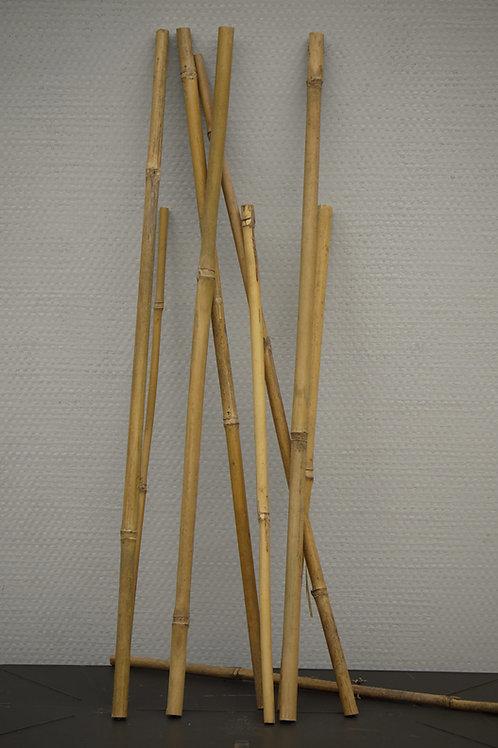 Tuteur en bambou (lots par 10)