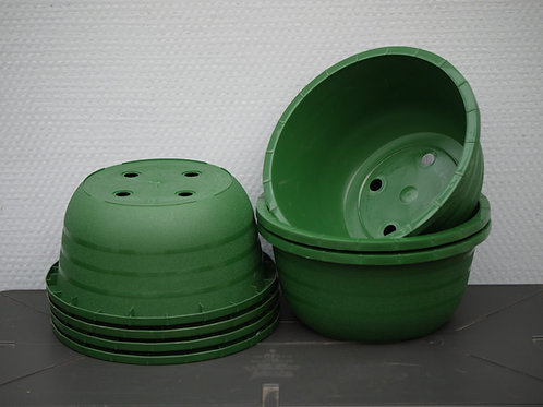 Coupe diamètre 19cm, couleur verte