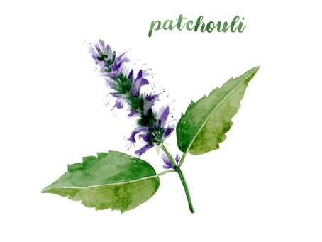 Purple Haze Patchouli