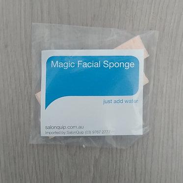 H2O Sponges