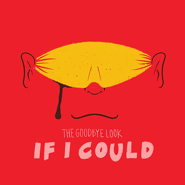 if i could - final.png