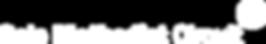 Sale Circuit Logo White.png