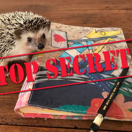 Why to keep your diary secret?