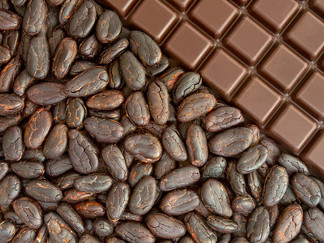 Wrinkle Free Skin,  Weight Loss and other Benefits of Dark Chocolate*