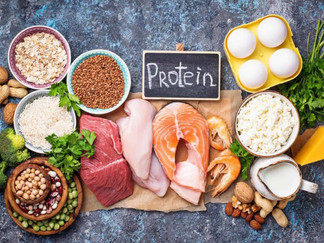 Animal Protein vs Plant Protein: Which One is Better for Me?*