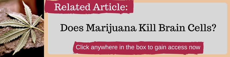 Does Marijuana Kills Brain Cells by Kellie Olver
