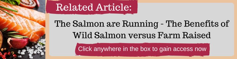 The Salmon are Running - The Benefits of Wild Salmon versus Farm Raised by Kellie Olver