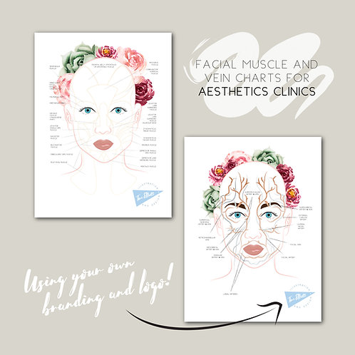 2 x Aesthetics Printed Poster - Facial Veins & Muscles with your logo