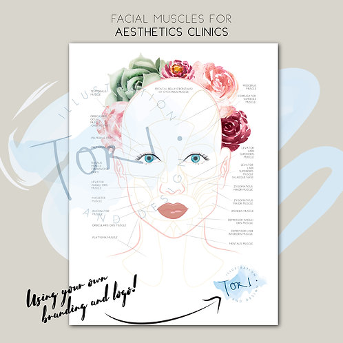 Aesthetics Printed Poster - Facial Muscles with your logo