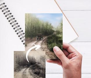 Photo Colorization