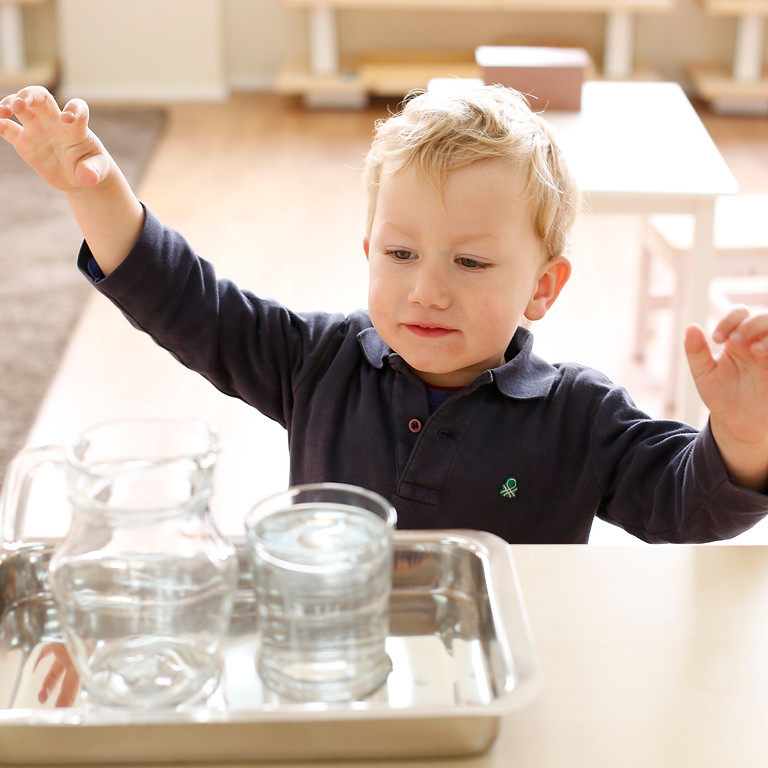 The Montessori Infant and Toddler