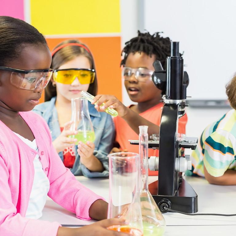 Montessori for the Elementary Years 蒙氏小学课程