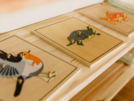 Eight Principles of Montessori