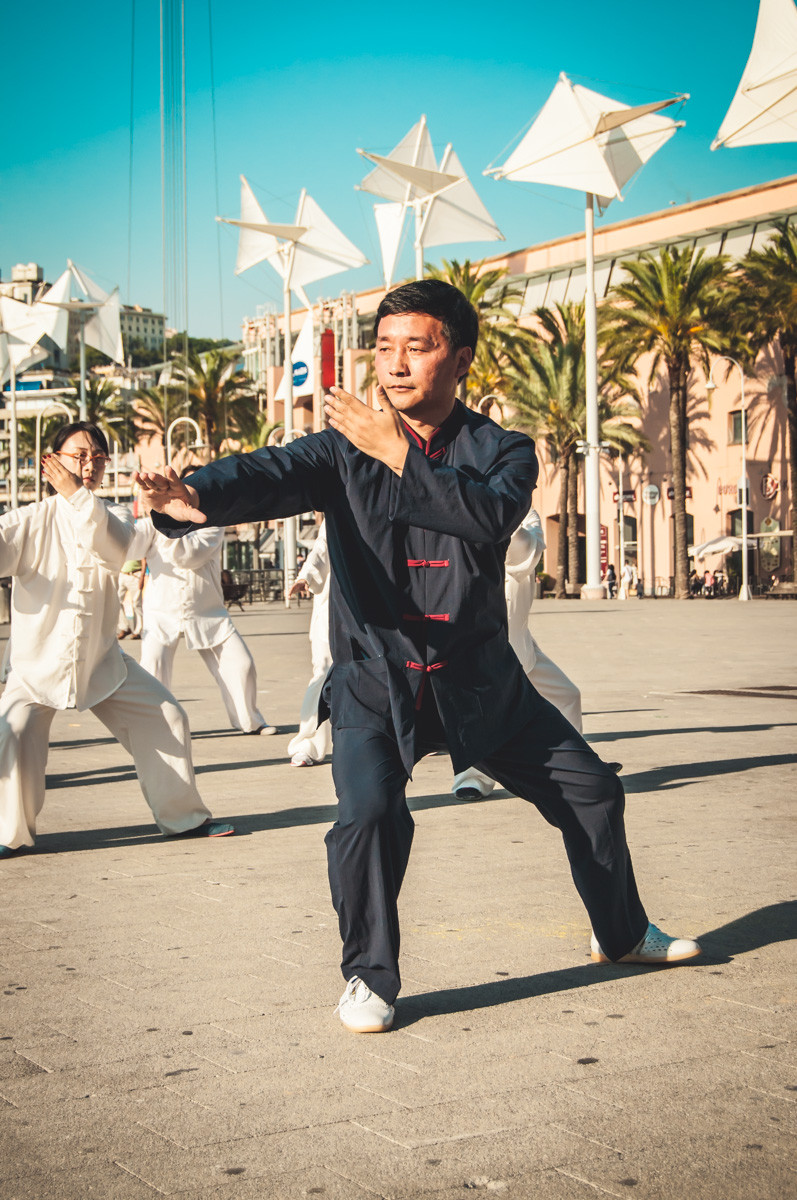 Master Zhou - Fast Form