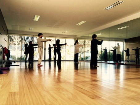 Tai Chi & Qigong Workshop in Gaia, Portugal