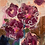 Thumbnail: Garden Treasure