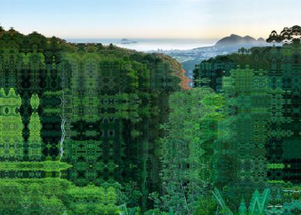 12 - BRESIL - RIO - FÔRET DE TIJUCA  - 2015
