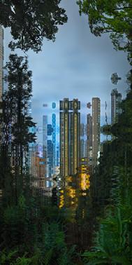 HONG KONG NUIT #46 - 2020