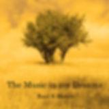 The Music in my Dreams album Cover SQUAR