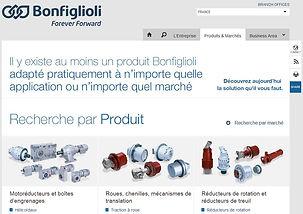 motoreducteur-Bonfiglioli.JPG