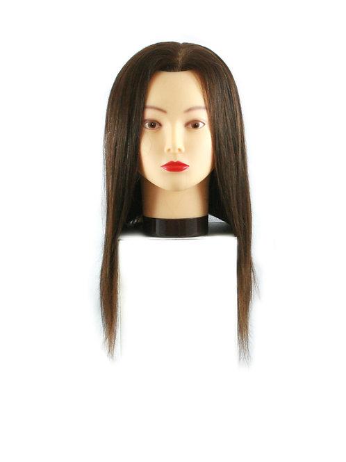 Training / Mannequin Head TH-BB2I16D-3B-2 100% Human Hair 16 inches