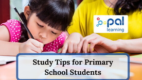 Study Tips for Primary School Students