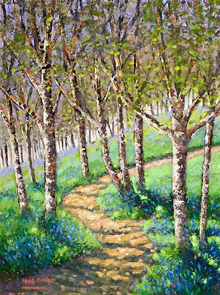 Birches & Bluebells