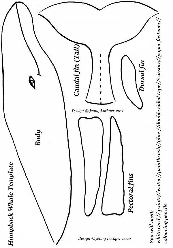 Humpback whale template.jpg