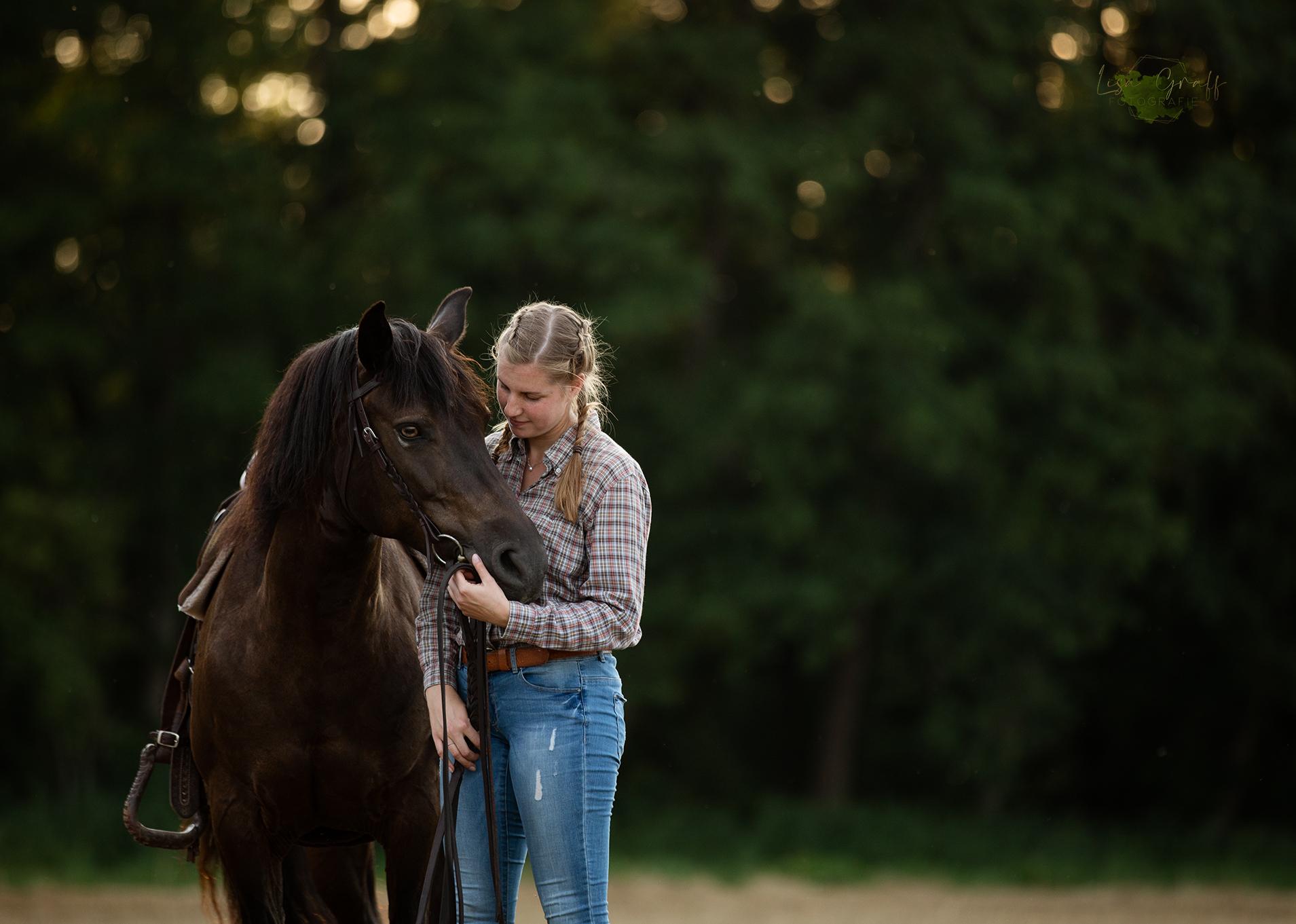Westernpferd, Westernreiter, Pony, Westernpony, Tierfotograf, Pferdefotografie, Tierfotografie, Foto