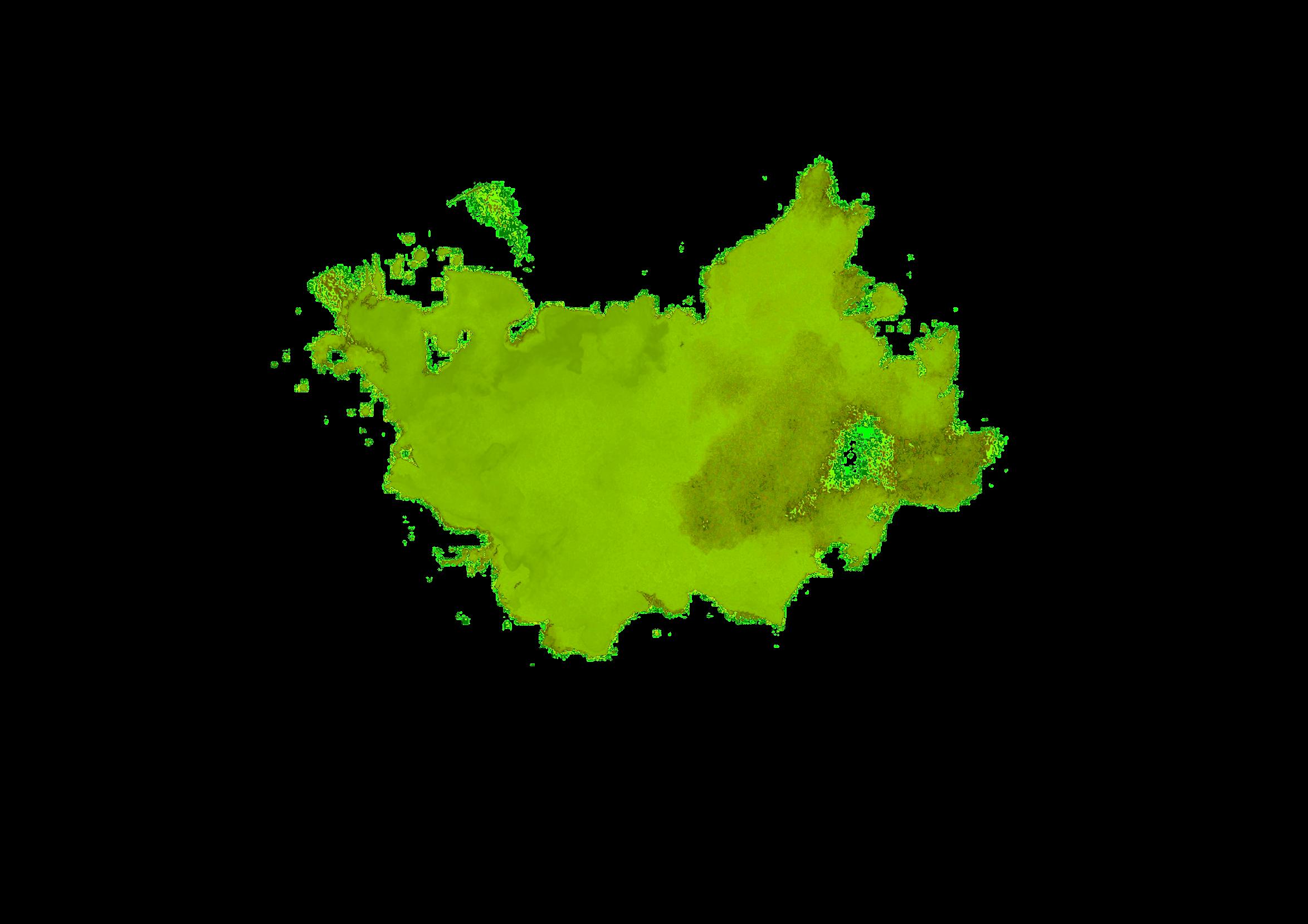 Wasserfarbe-Gr%25C3%25BCn_edited_edited.