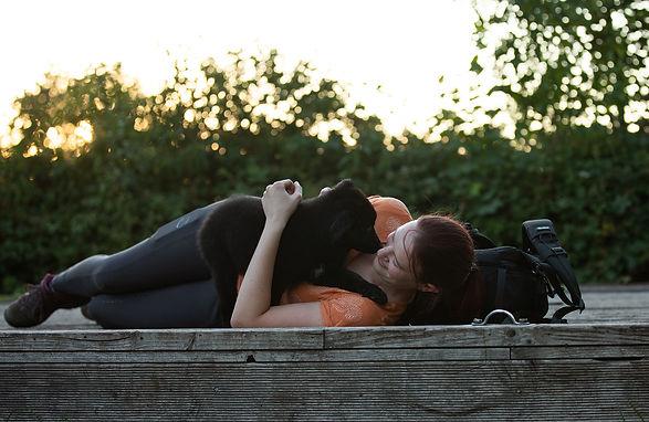 Fotograf, Tierfotograf, Hundefotograf, Pferdefotograf, Fotoshooting mit Pferd, Fotoshooting mit Hund, Welpe, Aussie, Australian Shepherd, Rheinland-Pfalz