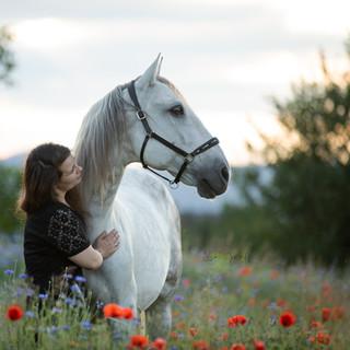 Spanier, Spanisches Pferd, Lusitano, Pferdemädchen, Fotoshooting mit Pferd, Pferdefotografie, Pferdefoto, Rheinland-Pfalz