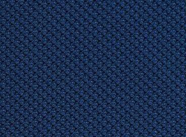 Indigo Blue.jpg