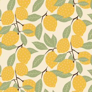 spotty lemons-03.jpg