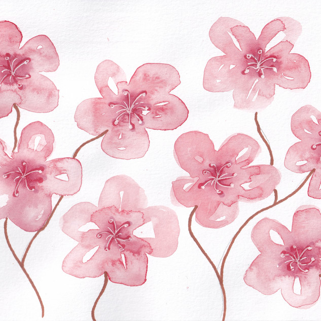 Day 13 – Cherry Blossom
