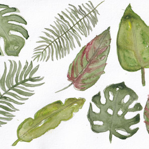 Day 20 – Leaves