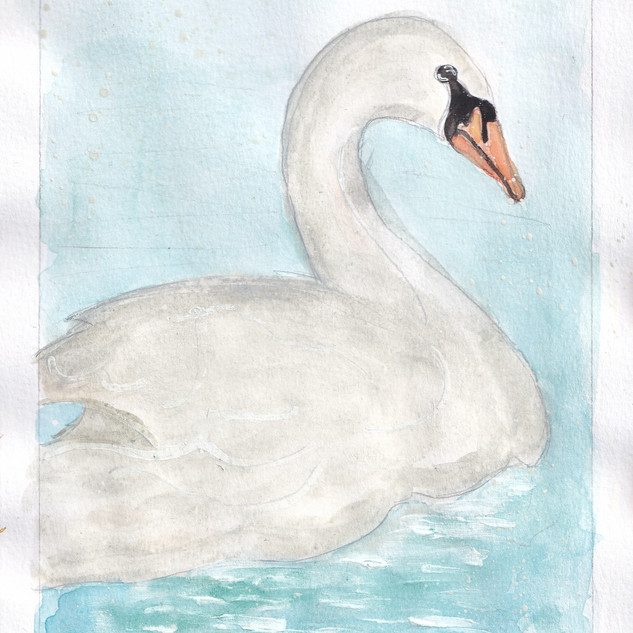 Day 25 – Swan