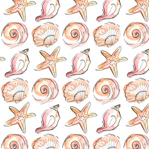 shells organised no background-01.jpg