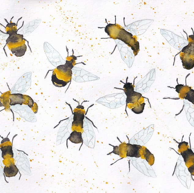 Day 11 – Bees