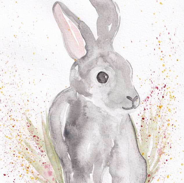 Day 29 – Rabbit