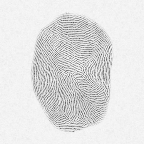 Canva - Photo of Fingerprint.jpg