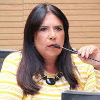 Vereadora Goretti Queiroz faz balanço de gestão