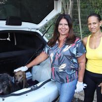 Mais três animais são resgatados da Casa dos Horrores